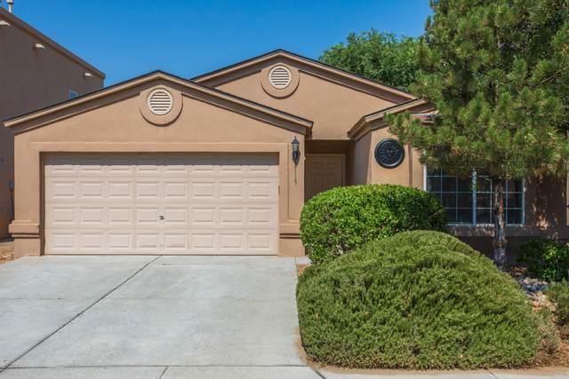 3115 Mata Ortiz Drive SW, Albuquerque, NM 87121 (MLS #994217) :: Sandi Pressley Team