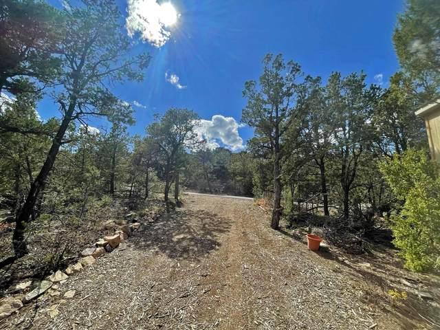 42 Mulberry Loop, Cedar Crest, NM 87008 (MLS #994274) :: Sandi Pressley Team