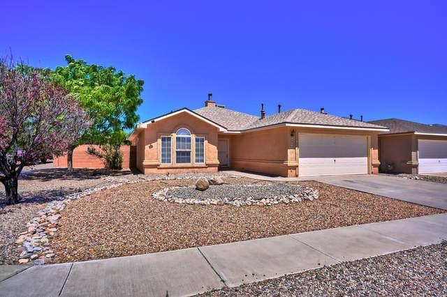 10242 Country Meadows Drive NW, Albuquerque, NM 87114 (MLS #994276) :: Sandi Pressley Team