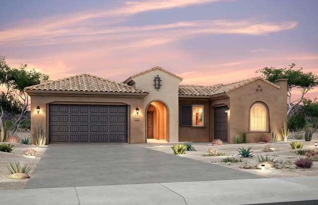 1628 Willow Canyon Trail NW, Albuquerque, NM 87120 (MLS #994342) :: The Buchman Group