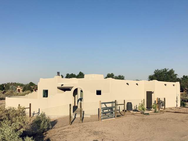 7001 Loma Larga Road, Corrales, NM 87048 (MLS #994393) :: Campbell & Campbell Real Estate Services
