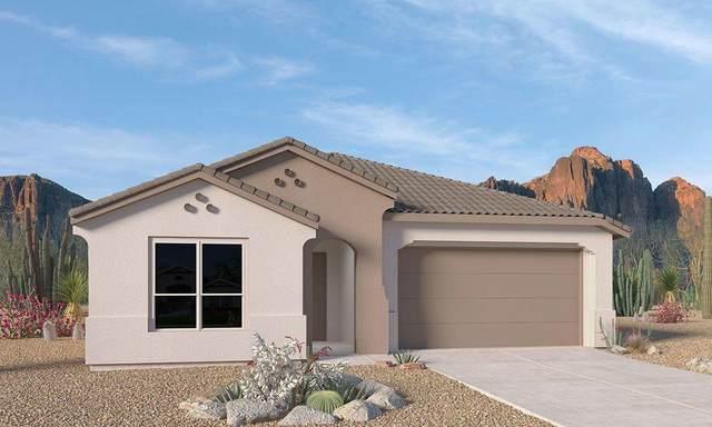 2520 Guadalupe NE, Rio Rancho, NM 87144 (MLS #994405) :: The Buchman Group