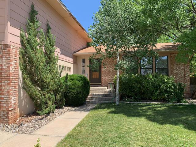 5516 Chelwood Park Boulevard NE, Albuquerque, NM 87111 (MLS #994410) :: The Buchman Group