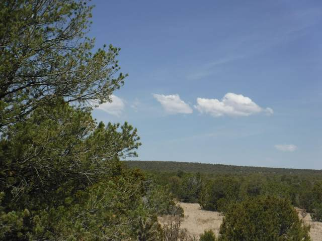 0 Dixon Road, Edgewood, NM 87015 (MLS #994423) :: Campbell & Campbell Real Estate Services