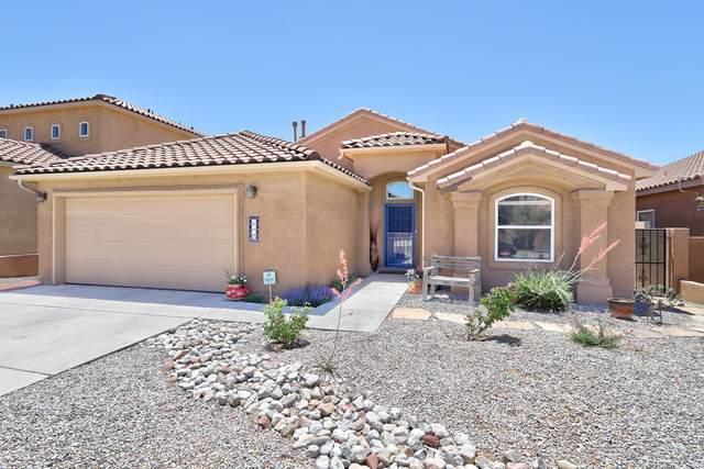 8428 Tierra Morena Place NE, Albuquerque, NM 87122 (MLS #994444) :: Sandi Pressley Team