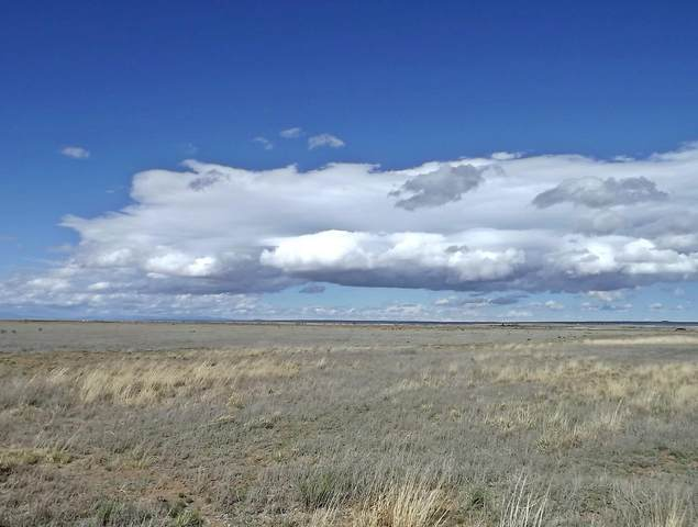 0 Martin Lane, Moriarty, NM 87035 (MLS #994523) :: Campbell & Campbell Real Estate Services