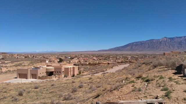 951 Camino Sin Pasada Road, Corrales, NM 87048 (MLS #994529) :: Sandi Pressley Team