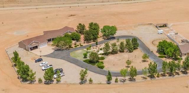 445 State Road 344, Edgewood, NM 87015 (MLS #994539) :: Sandi Pressley Team