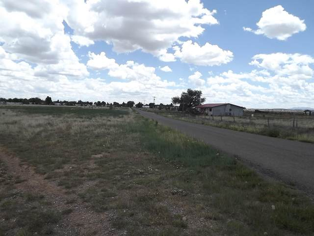 Debs Street, Moriarty, NM 87035 (MLS #994578) :: Campbell & Campbell Real Estate Services