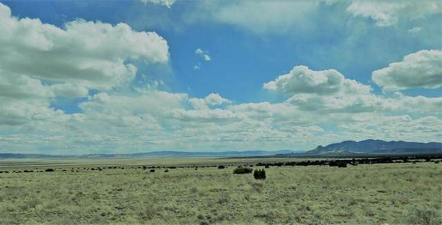 lot 20 Southern Trail, Datil, NM 87821 (MLS #994594) :: Campbell & Campbell Real Estate Services