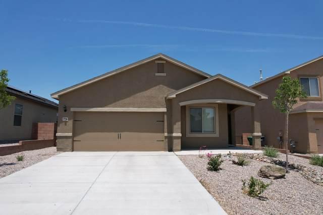 3716 Bronco Trail Road NE, Rio Rancho, NM 87144 (MLS #994602) :: Sandi Pressley Team