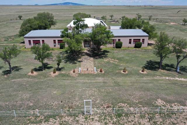 2007 Sofia Road, Grenville, NM 88424 (MLS #994617) :: Campbell & Campbell Real Estate Services