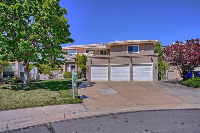 12027 Rocksberg Street NE, Albuquerque, NM 87111 (MLS #994619) :: Campbell & Campbell Real Estate Services