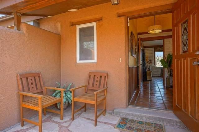 52 Arroyo Venada Road, Placitas, NM 87043 (MLS #994627) :: Campbell & Campbell Real Estate Services