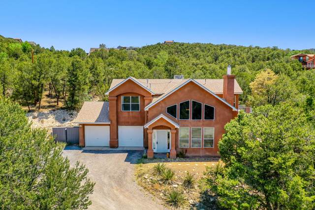 21 Forest Road, Tijeras, NM 87059 (MLS #994638) :: Campbell & Campbell Real Estate Services