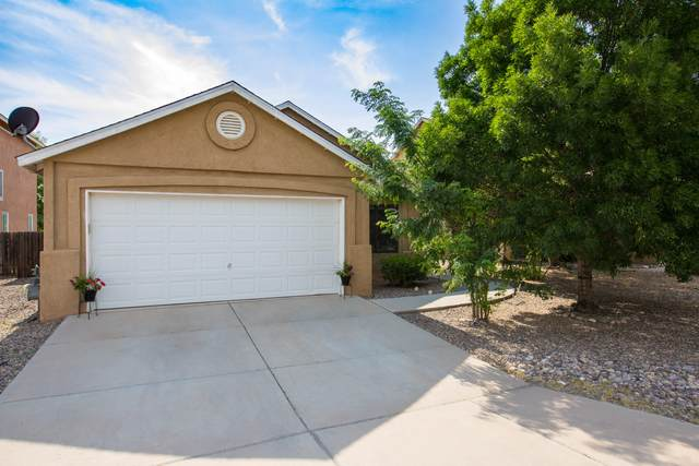3619 Big Cottonwood Drive SW, Albuquerque, NM 87105 (MLS #994655) :: Campbell & Campbell Real Estate Services