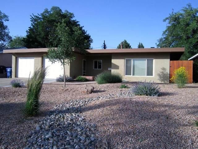 928 Avenida Del Sol NE, Albuquerque, NM 87110 (MLS #994672) :: Keller Williams Realty