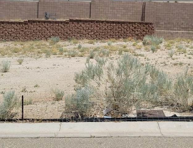 13615 Covered Wagon Avenue SE, Albuquerque, NM 87123 (MLS #994716) :: Keller Williams Realty