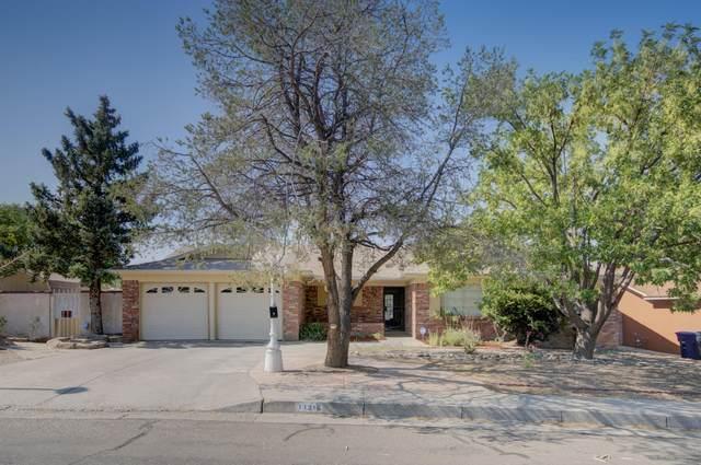 11316 Morocco Road NE, Albuquerque, NM 87111 (MLS #994752) :: Campbell & Campbell Real Estate Services