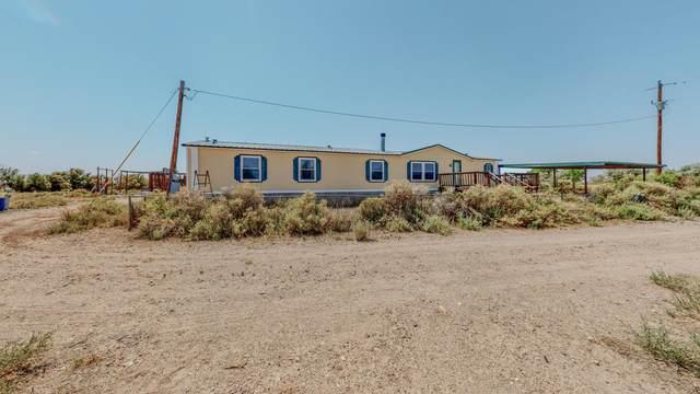 172 Ramon Lopez Road, Bernardo, NM 87006 (MLS #994761) :: Keller Williams Realty