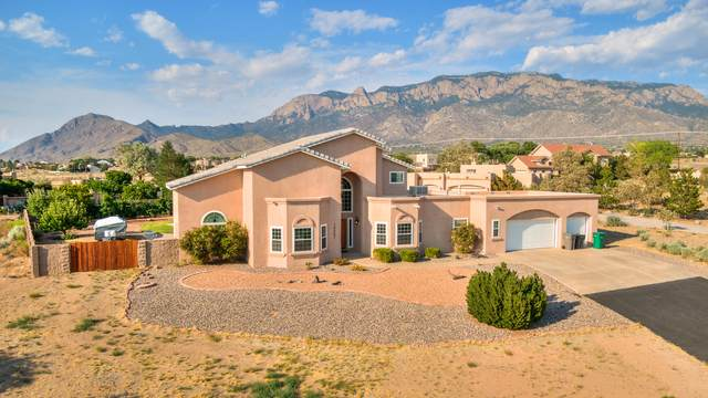 10207 Corona Avenue NE, Albuquerque, NM 87122 (MLS #994794) :: Keller Williams Realty