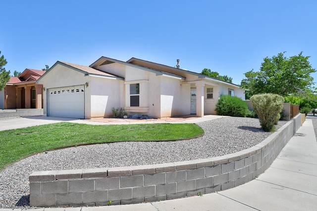 3134 Chama Meadows Drive NE, Rio Rancho, NM 87144 (MLS #994802) :: Keller Williams Realty