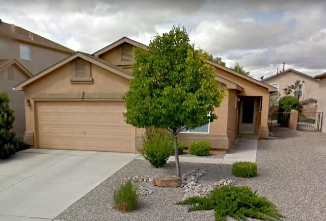 3727 Oasis Springs Road NE, Rio Rancho, NM 87144 (MLS #994852) :: Keller Williams Realty