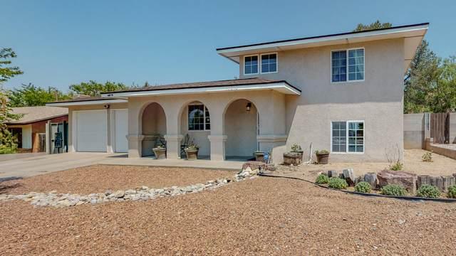 10213 Malaguena Lane NE, Albuquerque, NM 87111 (MLS #994859) :: Keller Williams Realty