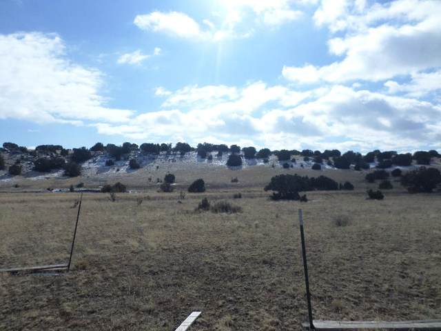 0 Lexco Road, Moriarty, NM 87035 (MLS #994890) :: Campbell & Campbell Real Estate Services