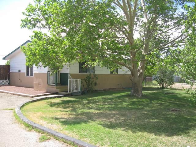 455 Sego Lily Street, Bosque Farms, NM 87068 (MLS #994915) :: Sandi Pressley Team