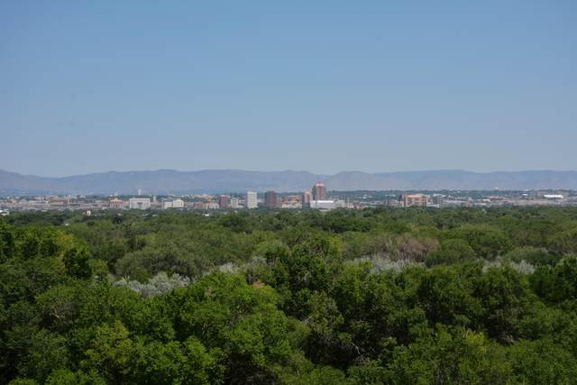 1422 Riverview Drive NW, Albuquerque, NM 87105 (MLS #994928) :: Keller Williams Realty