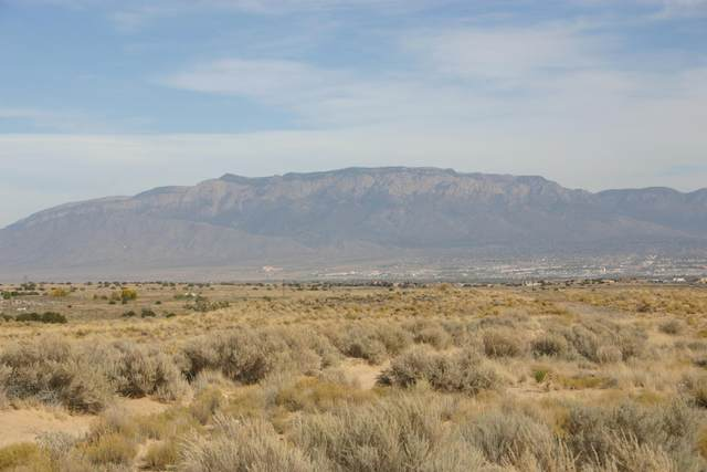 Cayuga Lane NW, Albuquerque, NM 87120 (MLS #994983) :: Sandi Pressley Team