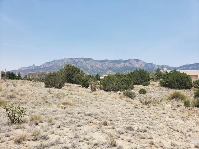 6705 Saltbush Court NE, Albuquerque, NM 87111 (MLS #994985) :: Campbell & Campbell Real Estate Services