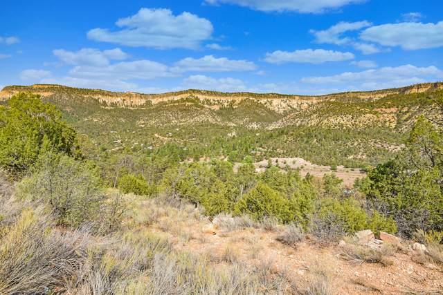 Lot A Indian Mesa, Jemez Springs, NM 87025 (MLS #995019) :: Sandi Pressley Team