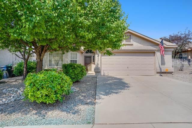 3206 Stony Meadows Circle NE, Rio Rancho, NM 87144 (MLS #995061) :: Berkshire Hathaway HomeServices Santa Fe Real Estate