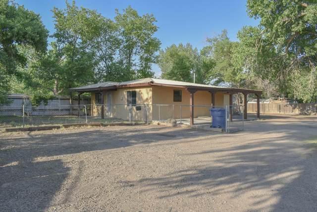 1326 A Juan Perea Road, Los Lunas, NM 87031 (MLS #995071) :: Sandi Pressley Team
