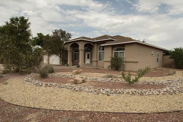 5321 Don Miguel Place SW, Albuquerque, NM 87105 (MLS #995140) :: Sandi Pressley Team