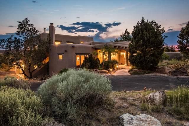13616 Elena Gallegos Place NE, Albuquerque, NM 87111 (MLS #995144) :: Sandi Pressley Team