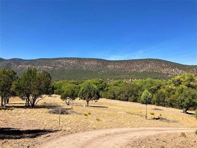 San Francisco River 12, Reserve, NM 87830 (MLS #995163) :: Campbell & Campbell Real Estate Services