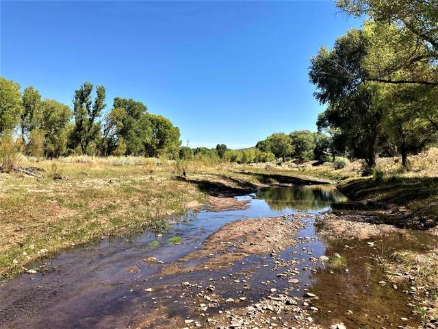 San Francisco River 56, Reserve, NM 87830 (MLS #995164) :: Campbell & Campbell Real Estate Services