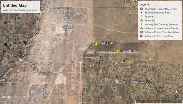Off Of Manzano Expressway, Los Lunas, NM 87031 (MLS #995233) :: Campbell & Campbell Real Estate Services