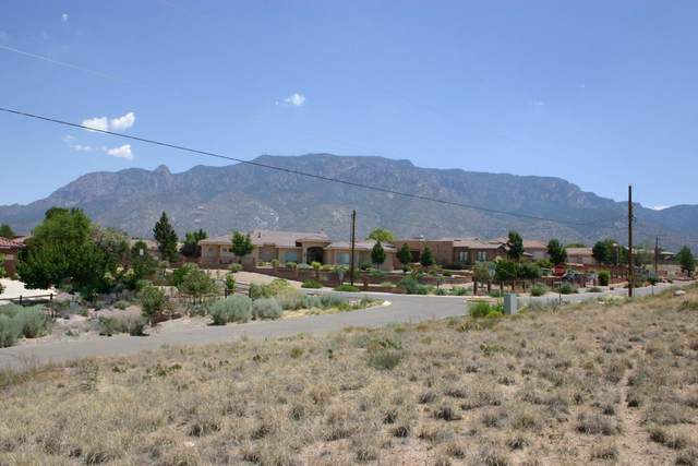 San Francisco Drive NE, Albuquerque, NM 87122 (MLS #995236) :: Sandi Pressley Team