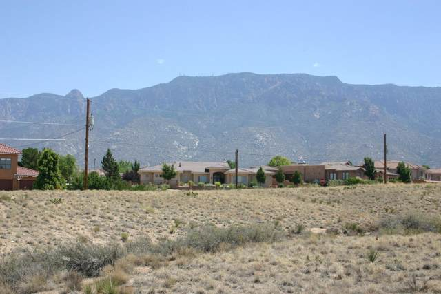 San Francisco Drive NE, Albuquerque, NM 87122 (MLS #995240) :: Sandi Pressley Team