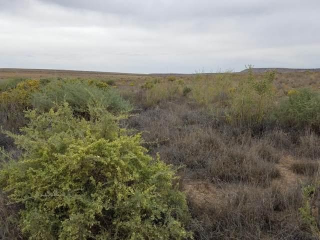 Tract 9 Canyon Drive, Canoncito, NM 87026 (MLS #995291) :: Sandi Pressley Team
