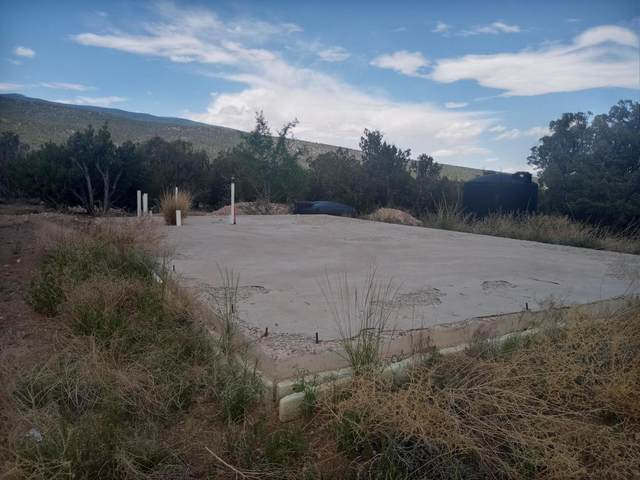 Stagecoach Road, Sandia Park, NM 87047 (MLS #995308) :: Sandi Pressley Team