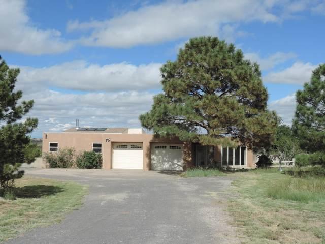 30 Lynch Trail, Edgewood, NM 87015 (MLS #995319) :: Sandi Pressley Team