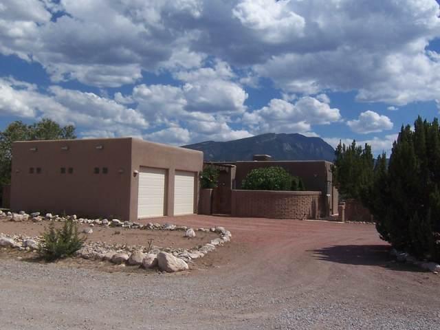 39 Camino De La Questa Del Aire, Placitas, NM 87043 (MLS #995327) :: Keller Williams Realty