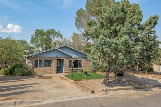 1735 Celina Court SE, Rio Rancho, NM 87124 (MLS #995347) :: Sandi Pressley Team
