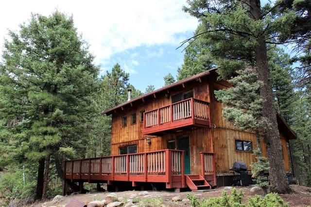 107 Turkey Trail, Jemez Springs, NM 87025 (MLS #995352) :: Keller Williams Realty