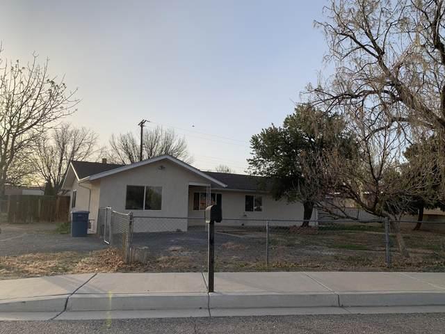 551 Sandoval Road SW, Los Lunas, NM 87031 (MLS #995440) :: Sandi Pressley Team